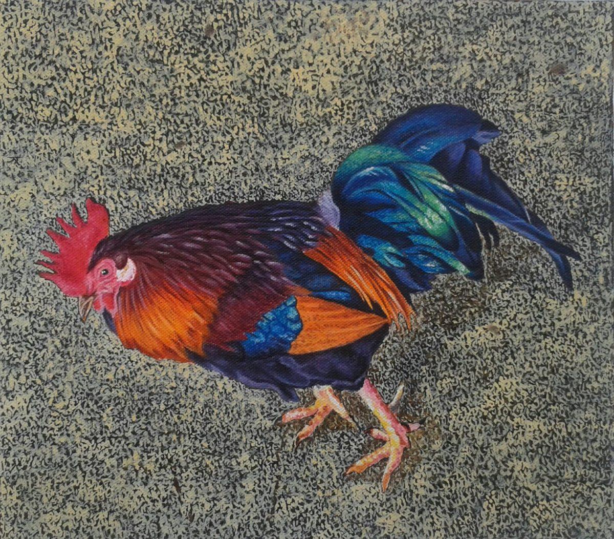 Vaidehi Kinkhabwala, Rooster Series, 2016